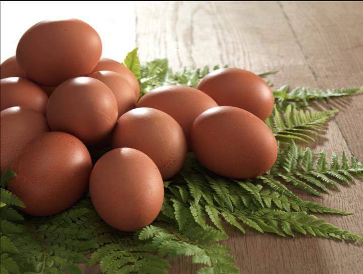 huevos01
