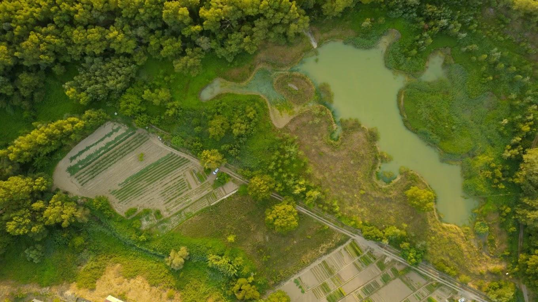 Huertas vistas con dron