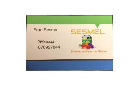 Plantilla destacado FRAN SESMA (23)
